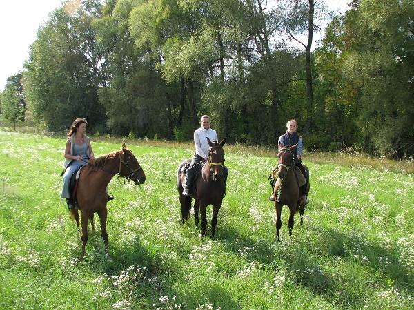 сюрприз подруге - прогулка на лошадях